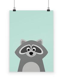 Poster Waschbär